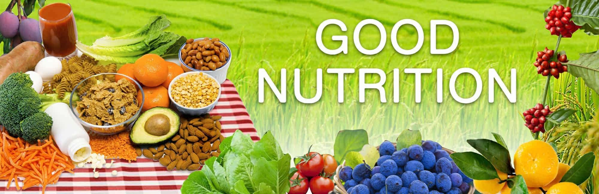 good nutrition is one of the most important parts of a