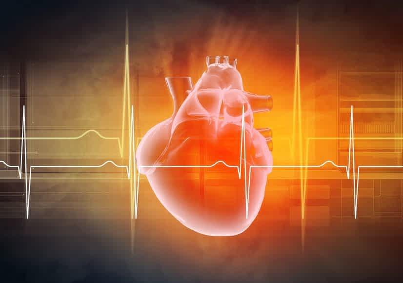 Heart&EKG